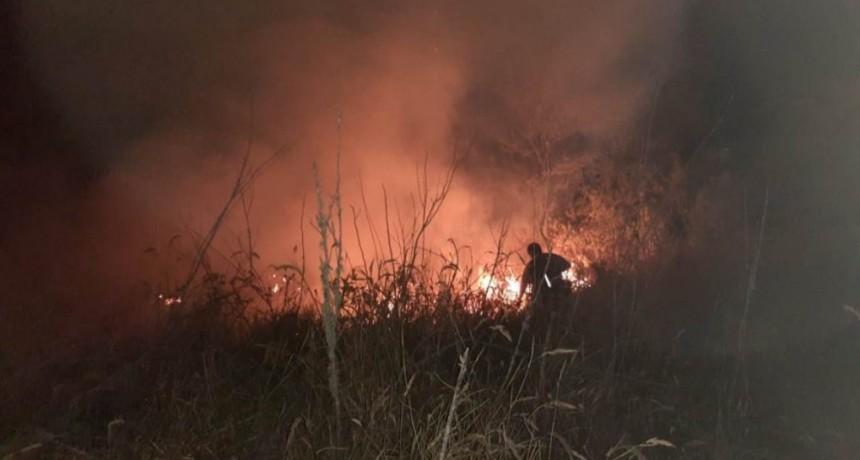 Continúan los incendios forestales en toda la provincia