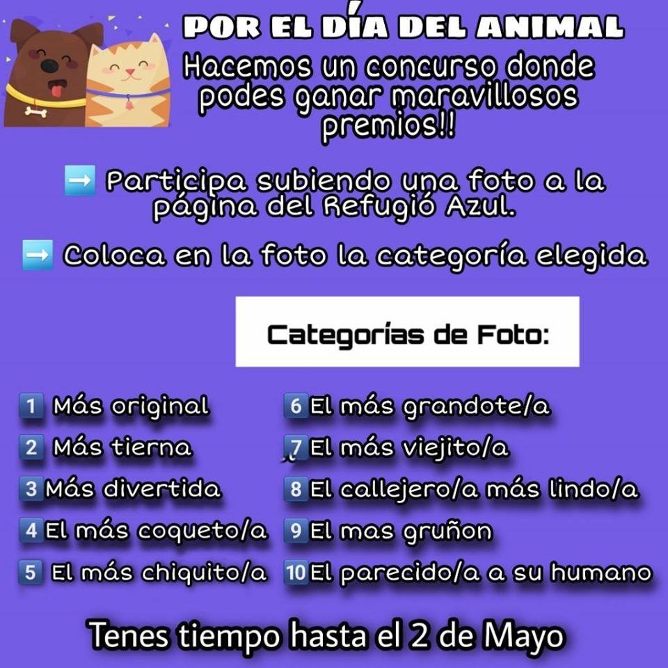 VILLA ÁNGELA: EL REFUGIO AZUL REALIZA CONCURSO POR EL DÍA DEL ANIMAL.