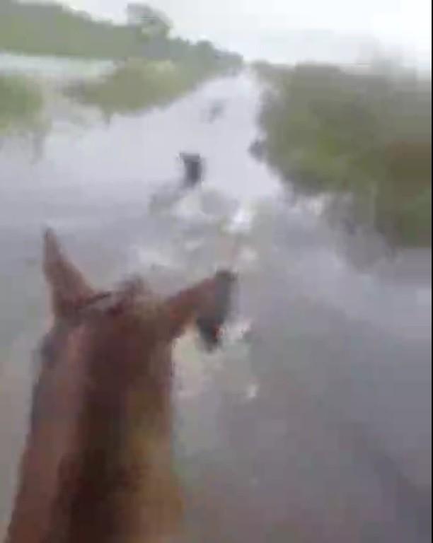 Colonia Juan Jose Paso: ...limpiaron los canales desde la escuela 29 hacia el pueblo, un poquito descuidados nos tienen para esta zona...