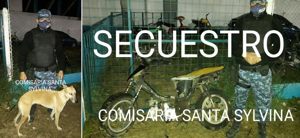 Santa Sylvina: LE ROBARON UNA PERRA Y EL DELINCUENTE LA CAMBIÓ POR UNA MOTO