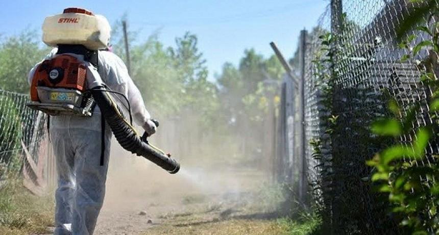 Mosquitos y Covid-19: polémica por pedido de fumigación en Charata