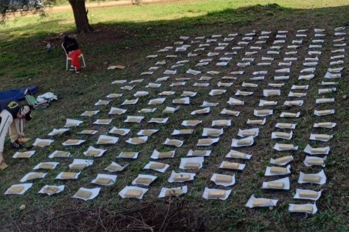 Golpe al narcotráfico: secuestran 126 kilos de marihuana en la planta urbana de J.J. Castelli