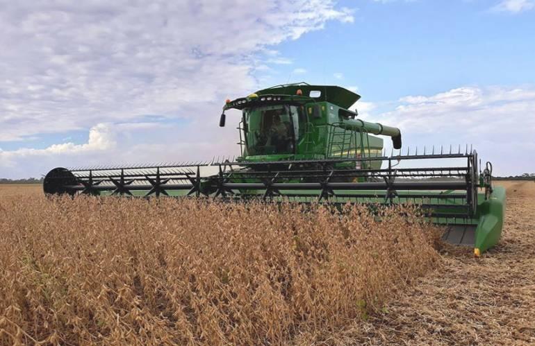 Chaco: La cosecha fue de más de un millón de toneladas