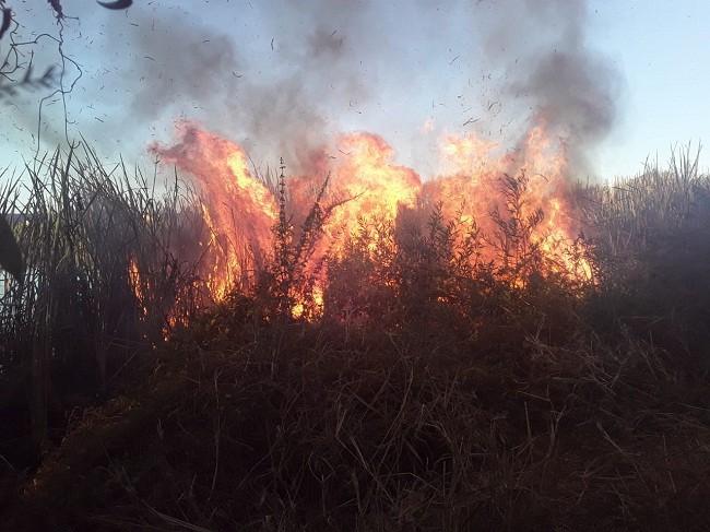 Villa Ángela: Un Nuevo Incendio en la Ciudad afecto un Predio de 2500 metros cuadrados
