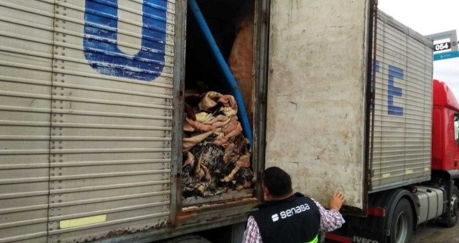 Puente Chaco-Corrientes: El Senasa decomisó más de cinco toneladas de carne bovina por malas condiciones sanitarias