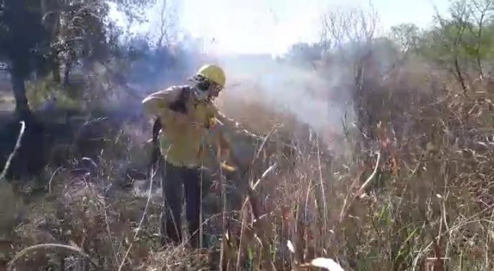 Villa Ángela: Se Incendiaron 2 hectáreas de pastizales en un Terreno sobre Ruta Nacional Nº 95