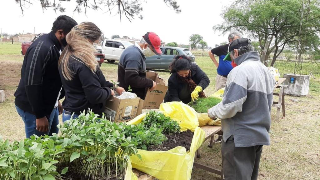 Villa Ángela: EL MUNICIPIO REALIZA LA CUARTA CAMPAÑA GRATUITA DE ENTREGA DE PLANTINES