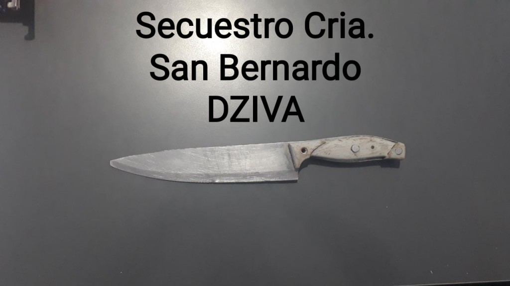 San Bernardo: DISCUTIÓ CON EL SOBRINO Y ÉSTE LO HIRIÓ CON UN CUCHILLO