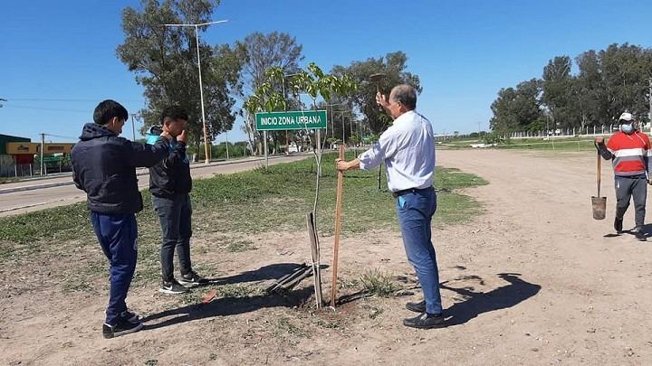 Villa Ángela: El Municipio Continúa con la Reforestación